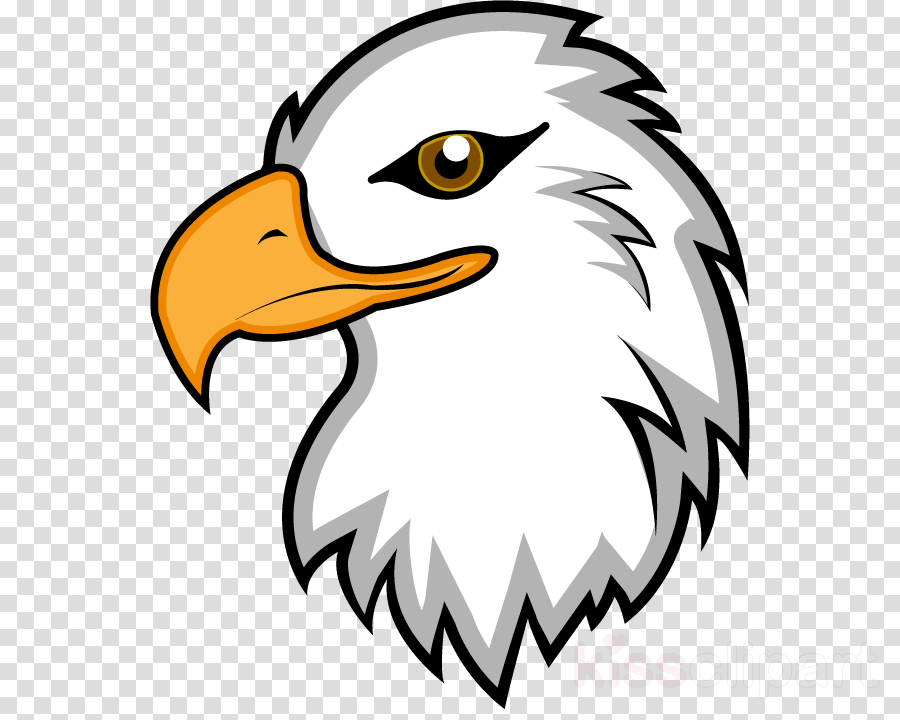 eagle clipart Bald eagle Clip art