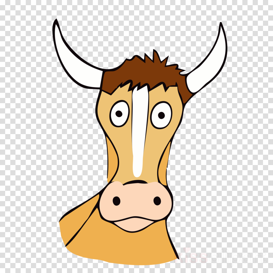 Nose Transparent Png Image Clipart Free Download