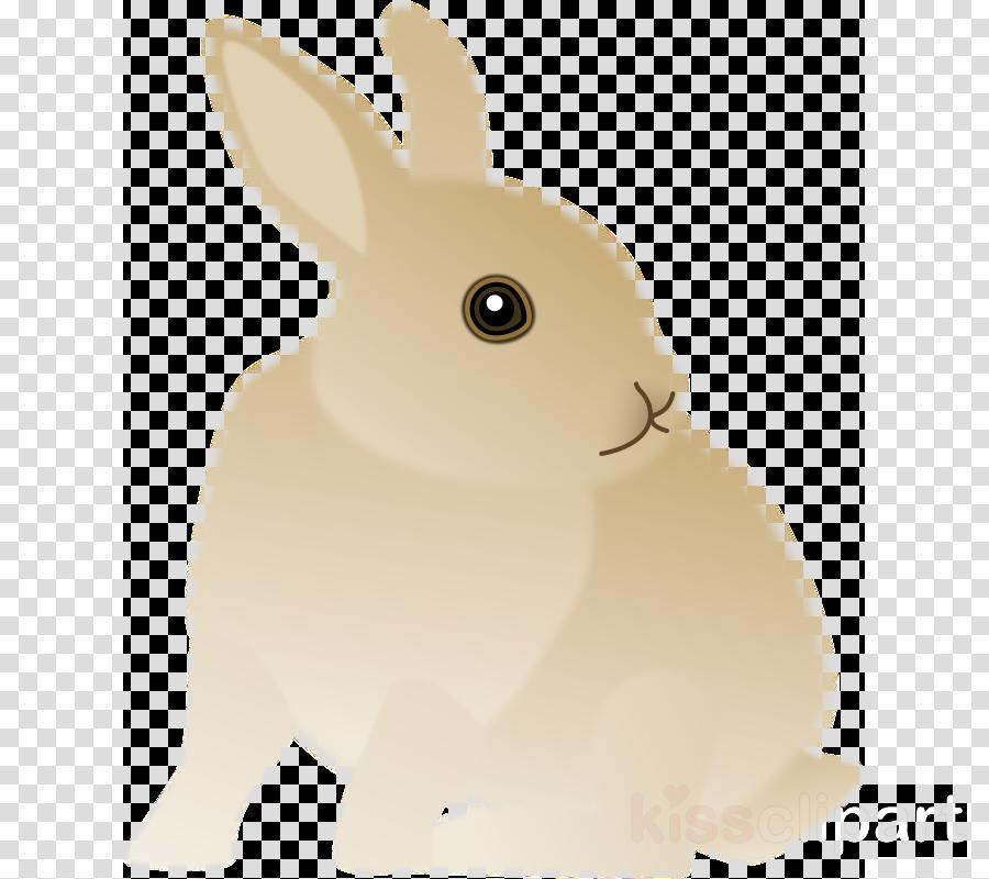 domestic rabbit clipart Domestic rabbit Hare Easter Bunny