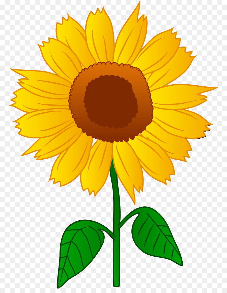 Flower Sunflower Transparent Png Image Clipart Free Download