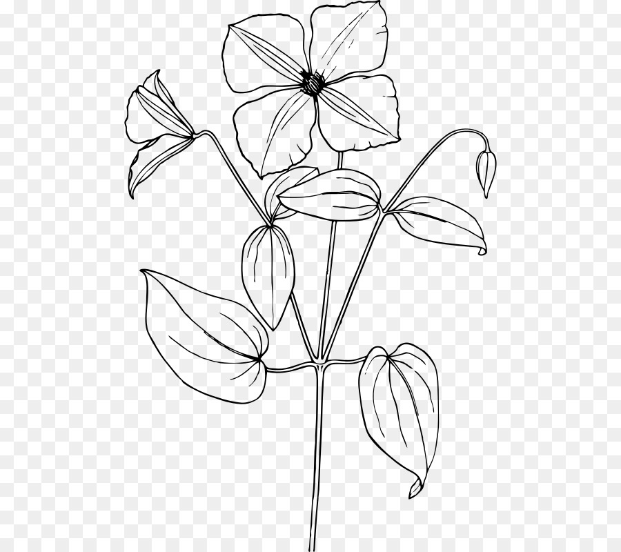 Flower Leaf Transparent Image Clipart Free Download