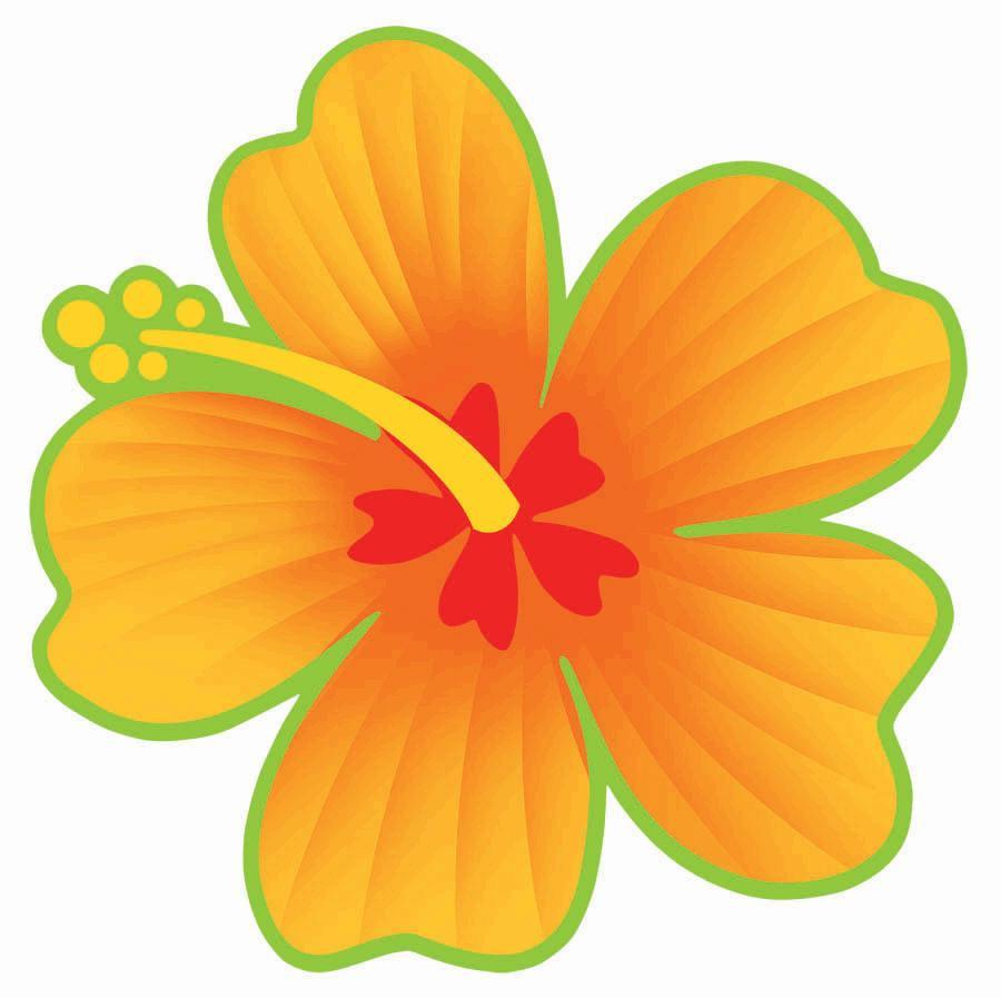 Download Hibiscus Flower Cutouts Clipart Flower Shoeblackplant