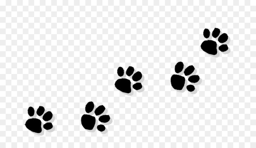 Black And White Flower clipart - Dog, Cat, Leaf, transparent
