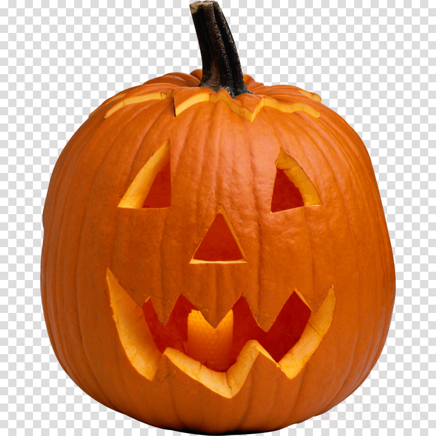 pumpkin on transparent background clipart Jack-o'-lantern Pumpkin Clip art