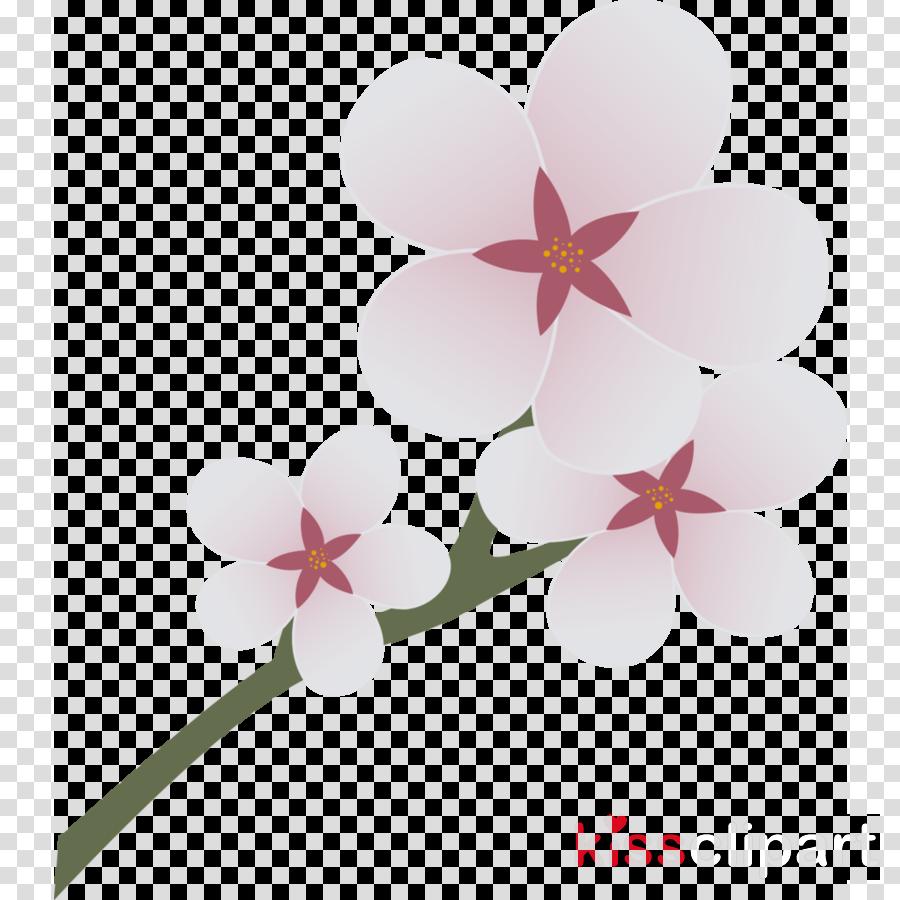 cherry blossom cutie mark clipart Cherry blossom Clip art
