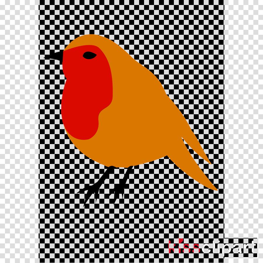 robin clipart European robin American robin Clip art