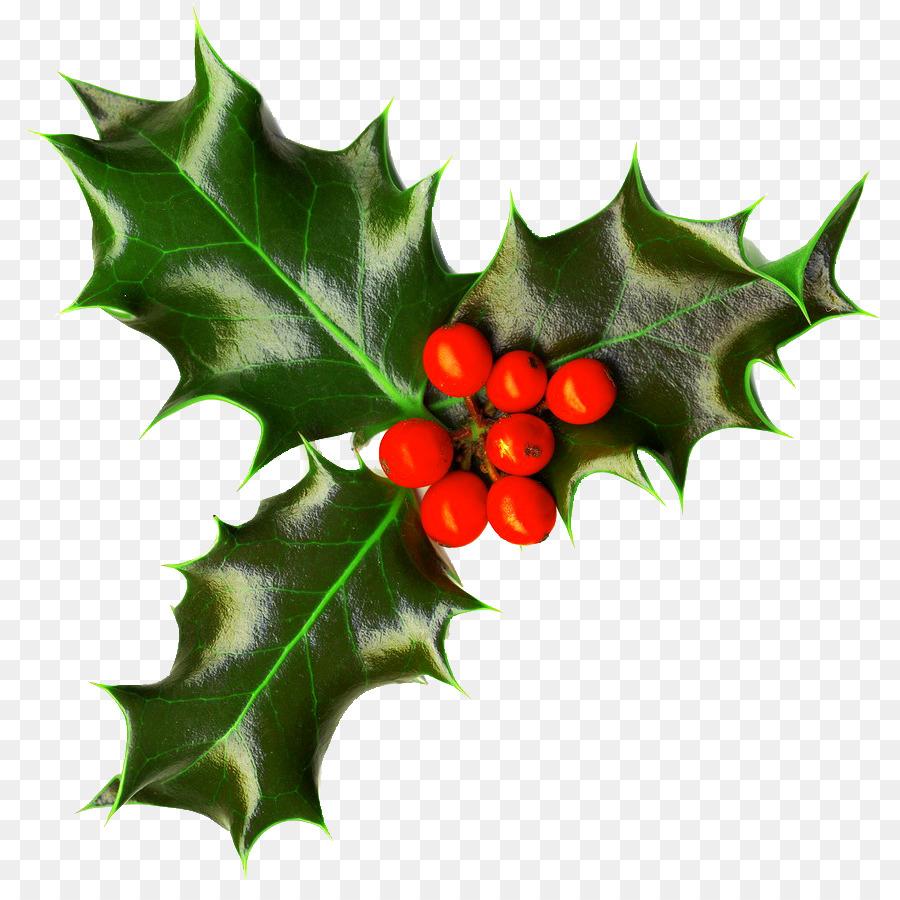 Christmas Holly Clip Art.Christmas Holly Clipart Leaf Transparent Clip Art