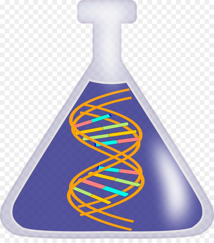 dna clip art png clipart DNA Clip art