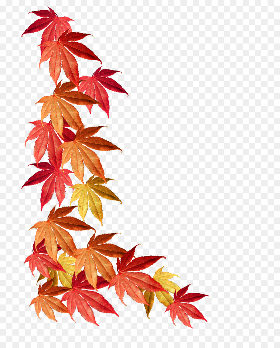 fall leaves border png clipart Borders and Frames Autumn leaf color Clip art