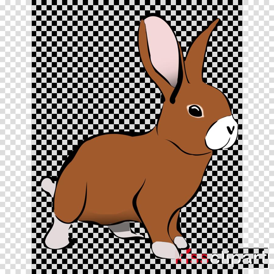rabbit clipart Hare Rabbit Clip art
