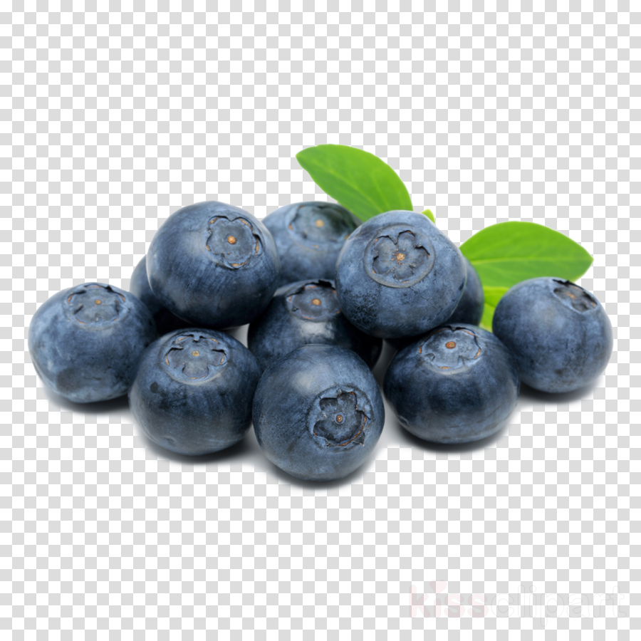 Download boosted ejuice anti lag clipart Blueberry Juice Berries