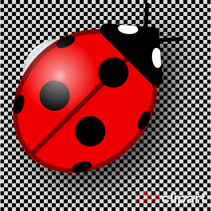 Ladybird beetle clipart Ladybird beetle Clip art
