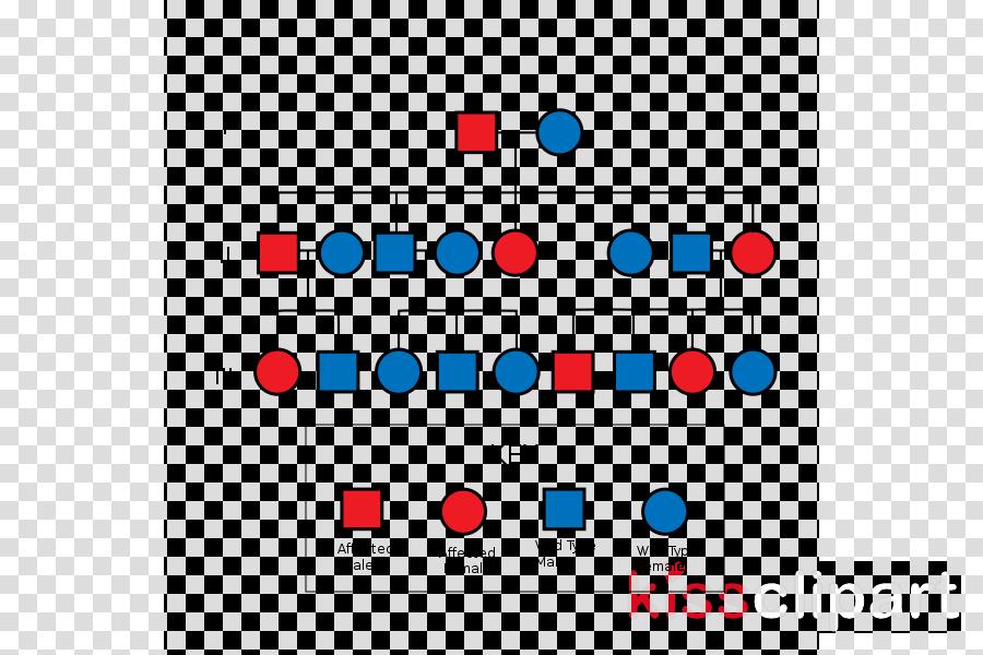 Pedigree Chart Clipart Diagram Genetics