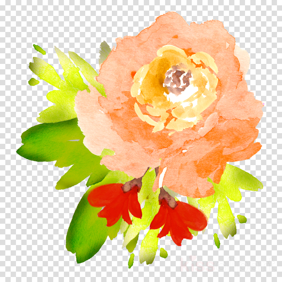 transparent flowers watercolor orange clipart Floral design Watercolour Flowers Watercolor painting