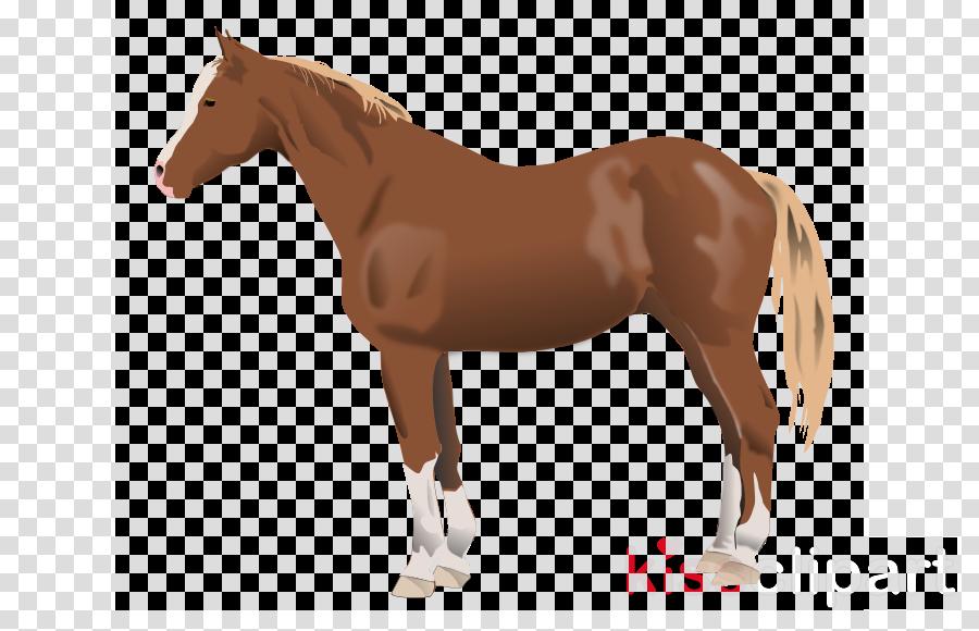 back horse silhouette clipart Arabian horse American Quarter Horse Clip art