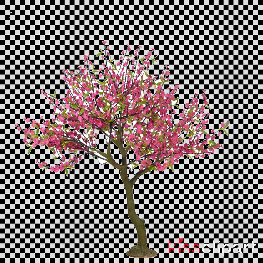 Cherry Blossom Drawing Tree Drawing Art Ideas
