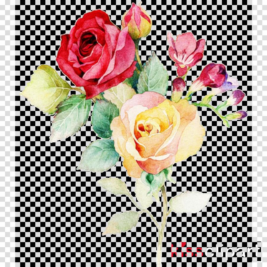 rose watercolour flowers clipart Watercolor: Flowers Watercolor painting Watercolour Flowers