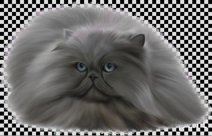 grey cat clipart Persian cat British Shorthair Russian Blue