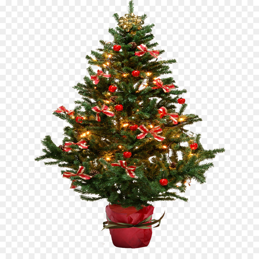 Christmas Trees Png.Christmas Tree Background Clipart Tree Christmas
