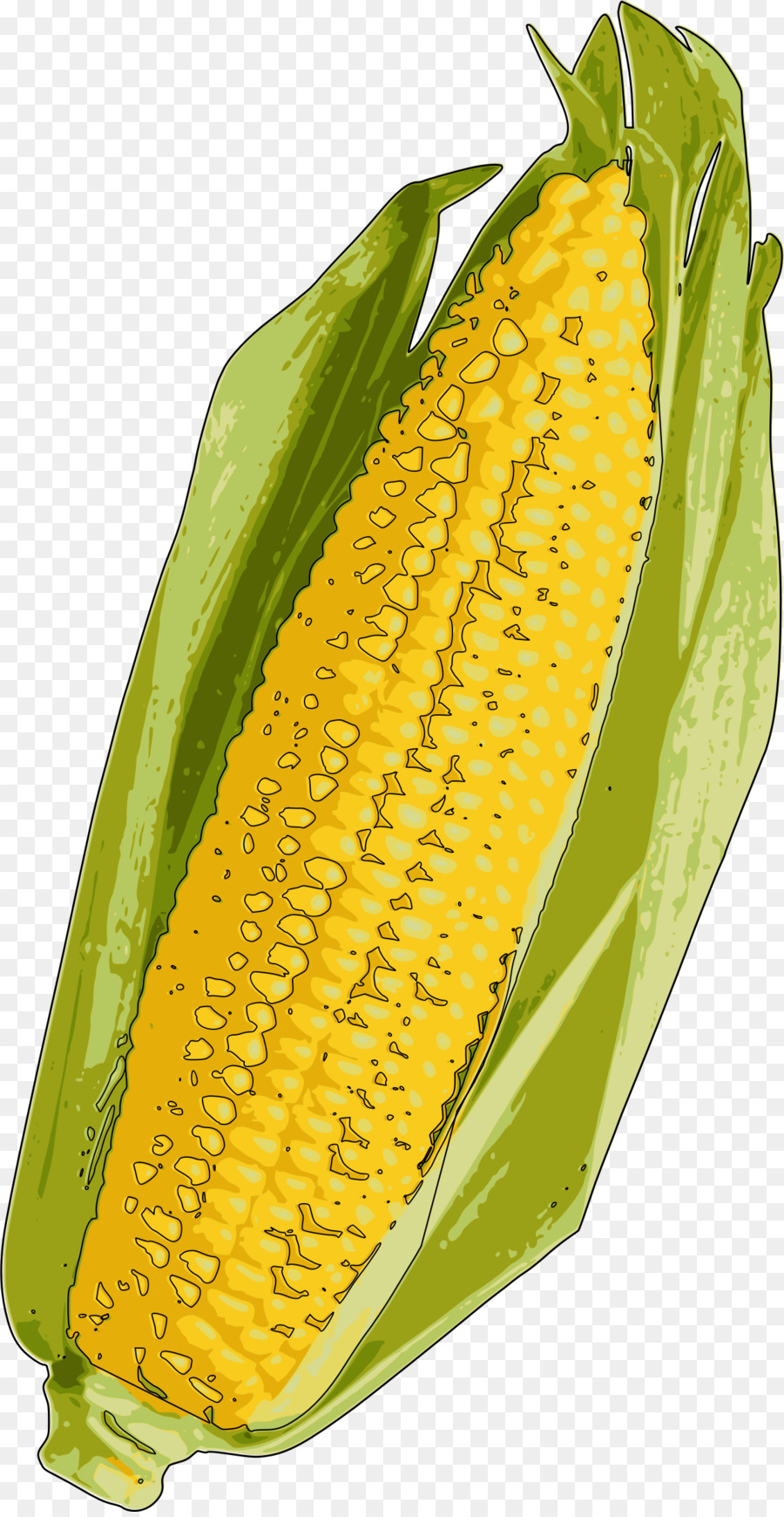 corn on the cob clipart Corn on the cob Vegetarian cuisine Clip art