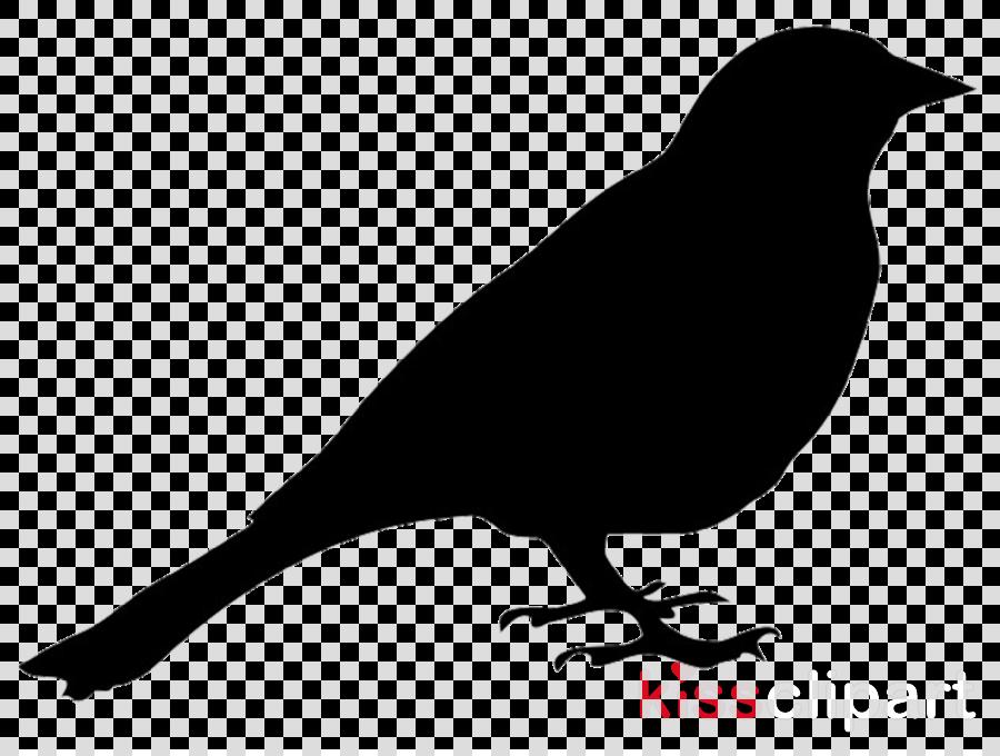 bird silhouette clipart Bird Clip art