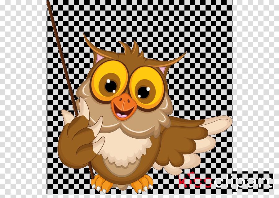 cartoon owl teaching clipart Owl