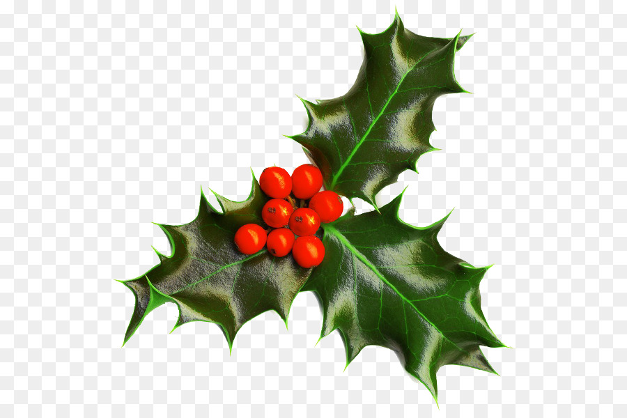 Christmas Holly Clipart Png.Christmas Holly Clipart Leaf Transparent Clip Art