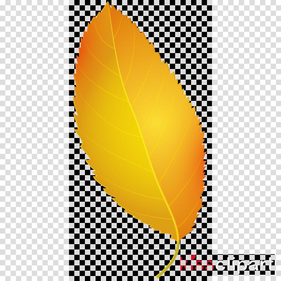 autumn leaf png clipart Autumn leaf color Clip art