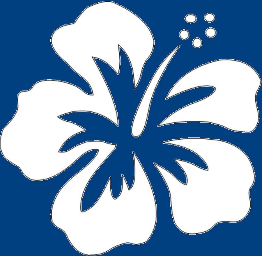 Download Draw Cartoon Hibiscus Flowers Clipart Drawing Hawaiian