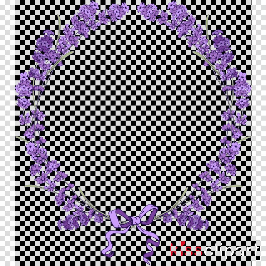 lavender png clipart English lavender Clip art