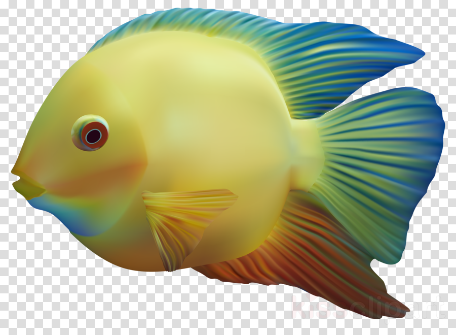 Fish Fishing Transparent Png Image Clipart Free Download