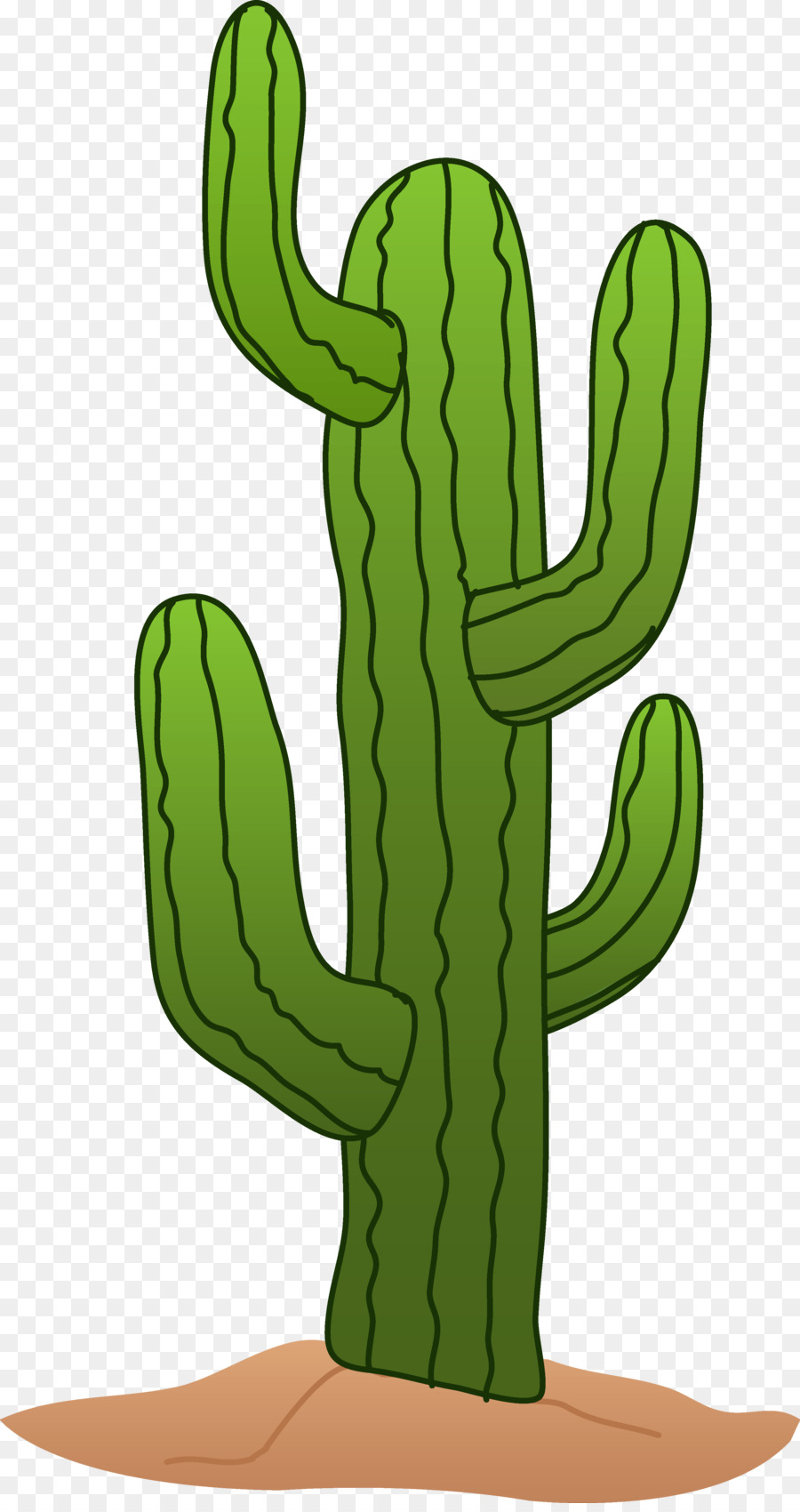 Cactus cartoon. Clipart hand tree transparent