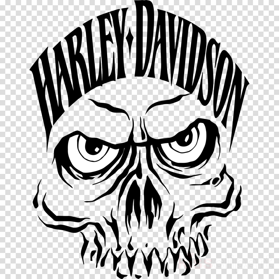harley davidson skull clipart Harley-Davidson Motorcycle Clip art
