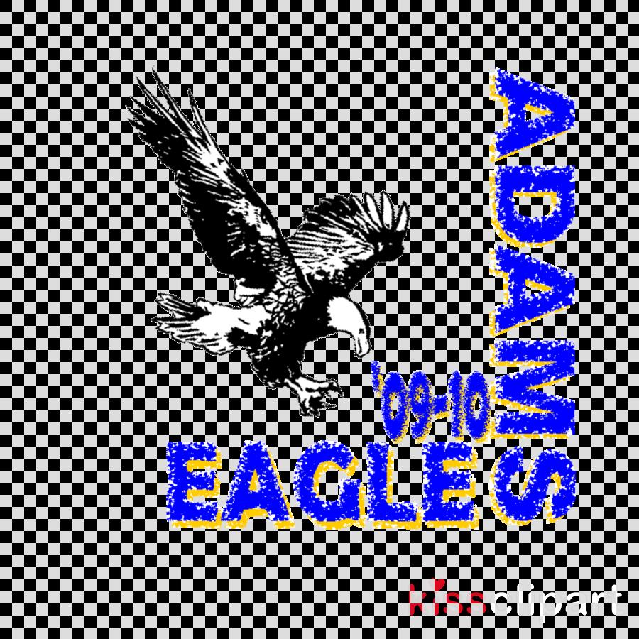 Clip art clipart Bald eagle Clip art