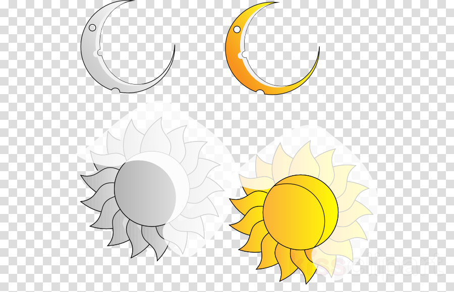 Sunlight, Moon, Leaf, transparent png image & clipart free download