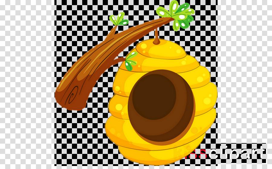 ruche dessin png clipart Bee Clip art
