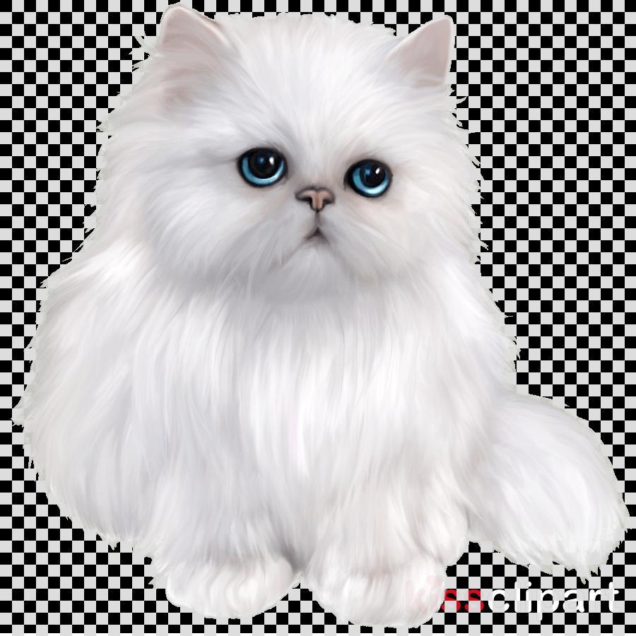 persian cat clipart Persian cat Kitten Maine Coon