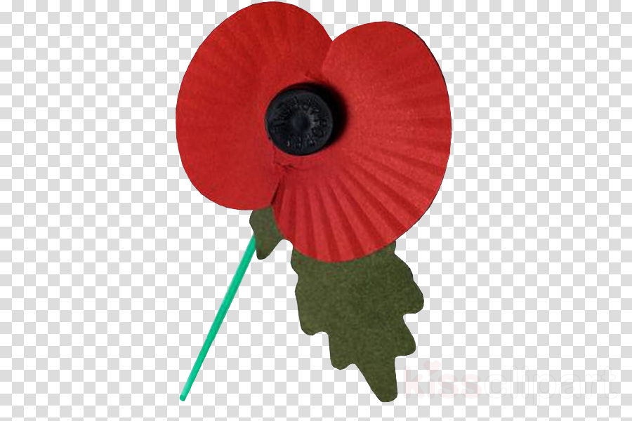 Poppy Flower Transparent Png Image Clipart Free Download