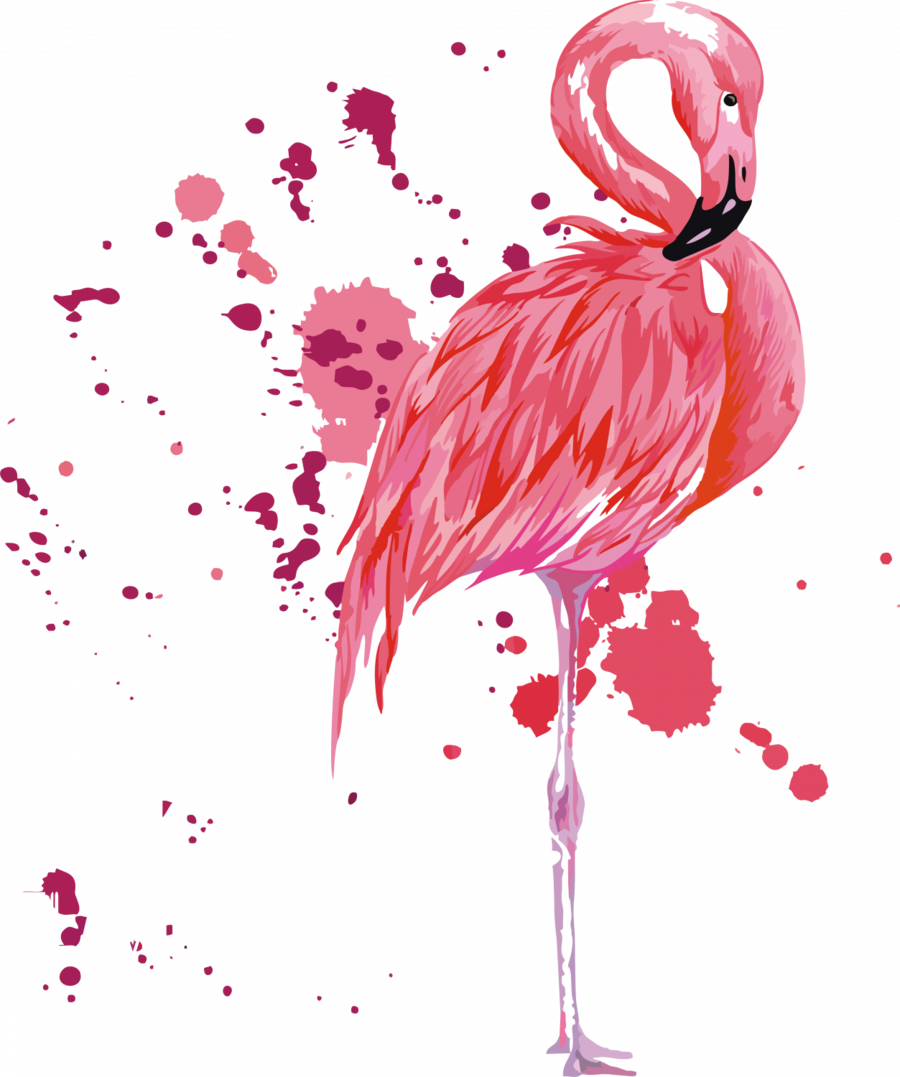 diario 2017 2018 tokidoki clipart Diary Alpha Edition Kalender Collegetimer A5 Flamingo 2017/2018 - Ringbuch