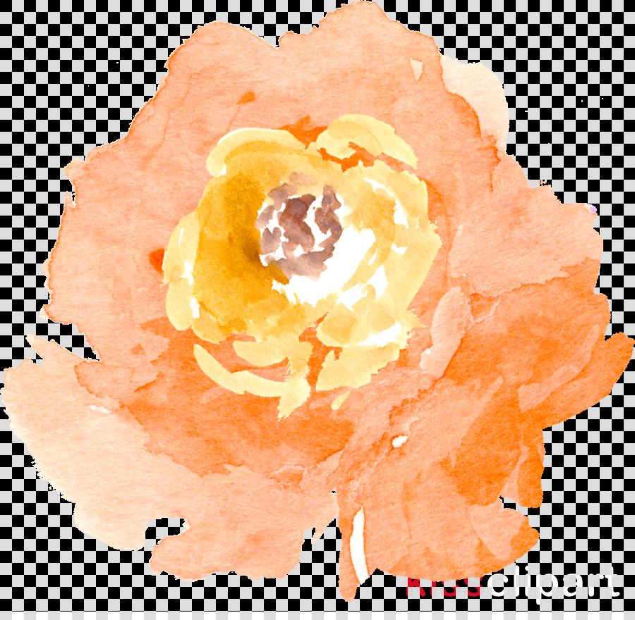 watercolor flower clipart Watercolor: Flowers Watercolor painting Clip art