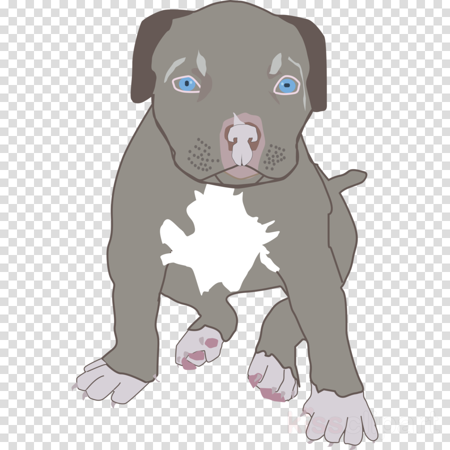 pitbull puppy clipart American Pit Bull Terrier Puppy