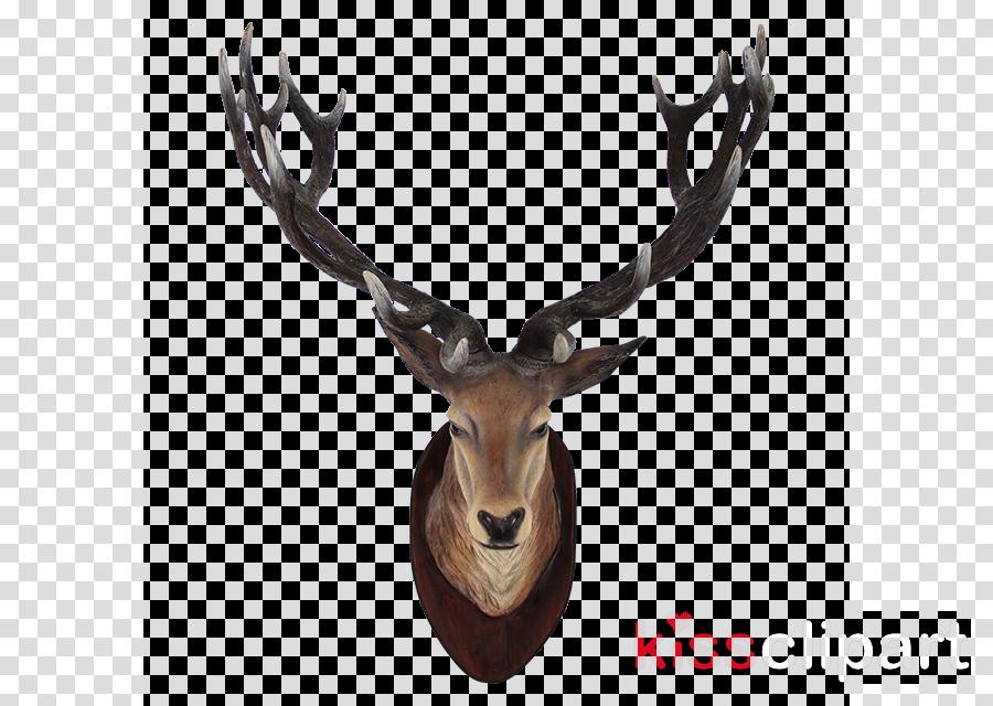 Deer clipart White-tailed deer Moose