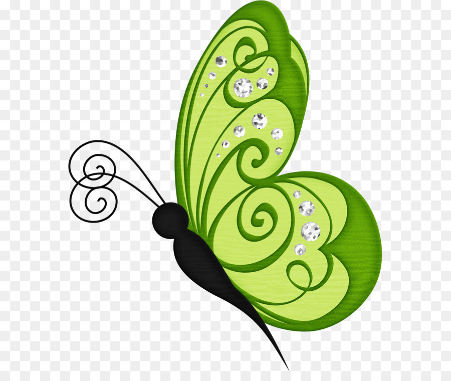 Butterfly green. Leaf background clipart circle