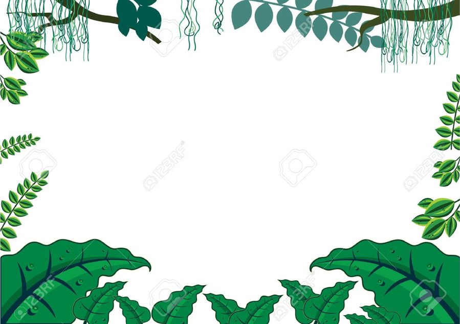 Download safari jungle frame clipart Borders and Frames Picture ...