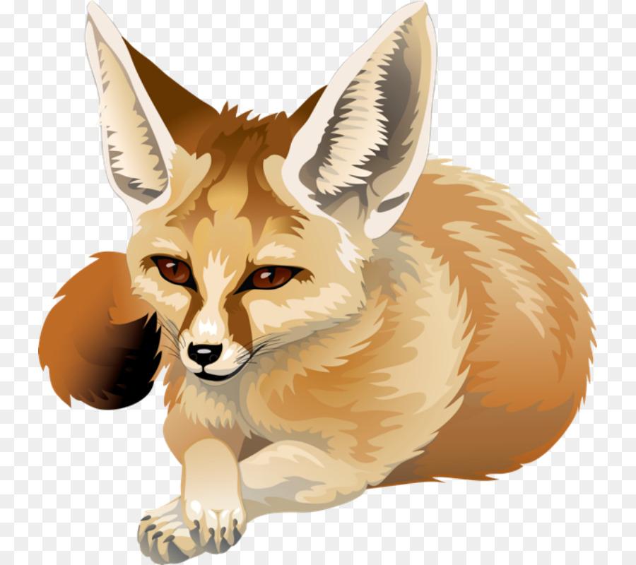 fennec fox clipart Red fox Fennec fox