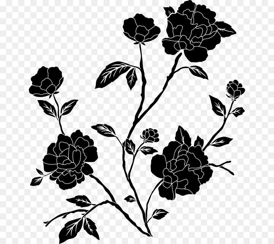 Rose Flower Drawing Transparent Png Image Clipart Free Download