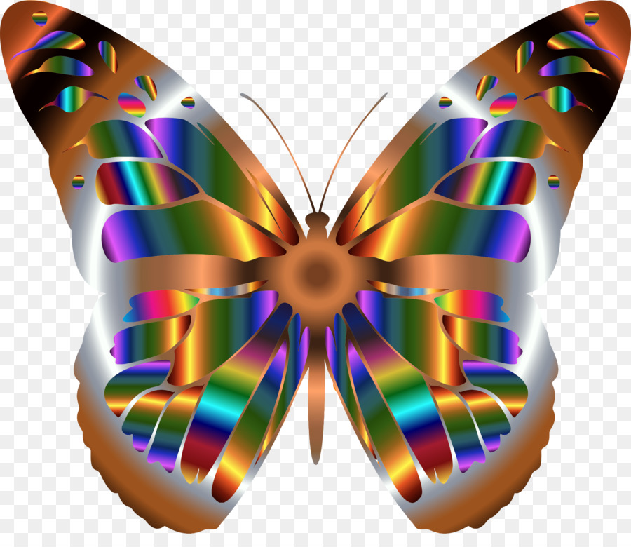 rainbowmonarch butterfly clipart A Butterfly Insect