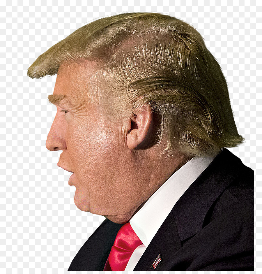 Donald Trump clipart - Face, Nose, Head, transparent clip art