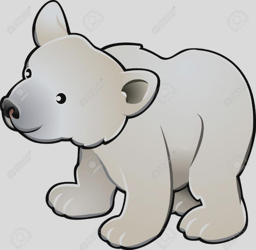 Download gray baby polar bear picture frame clipart Polar bear Clip ...