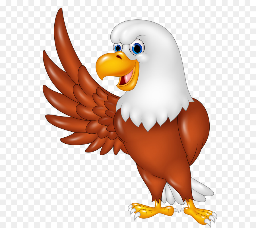 Eagle cute. Drawing clipart bird chicken